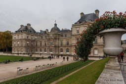 The Luxembourg Palace
