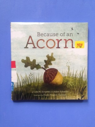 Because of an Acorn by Lola M. Schaefer and Adam Schaefer and illustrated by Preston Gannon