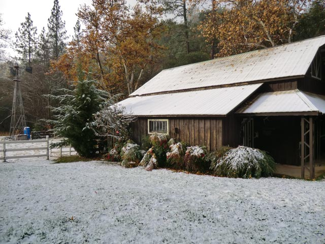 Light dusting of snow on yard and barn