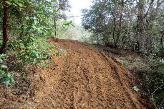 freshly graded earthen road up the side of a hill