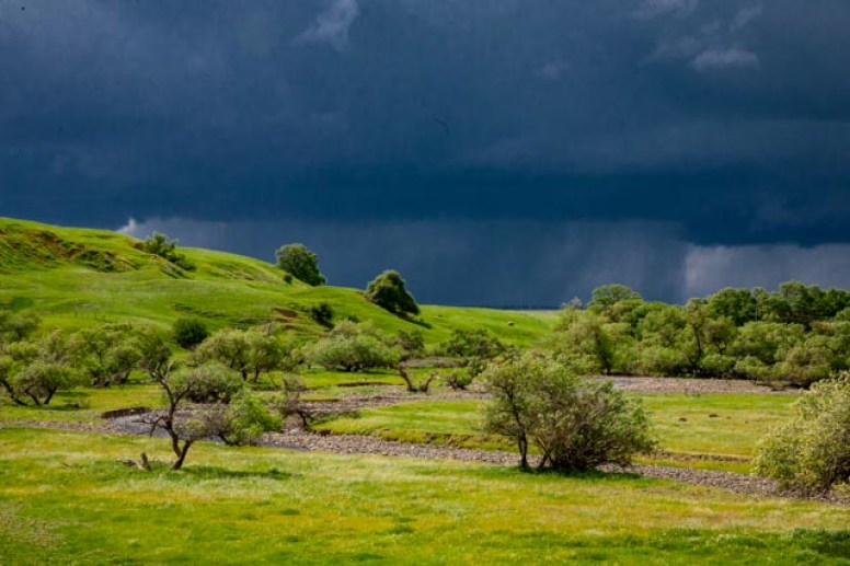 Springtime storms in Northern California - great dark clouds and bright green grass