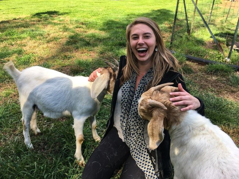 Young woman petting two goat kids with great laugh of joy