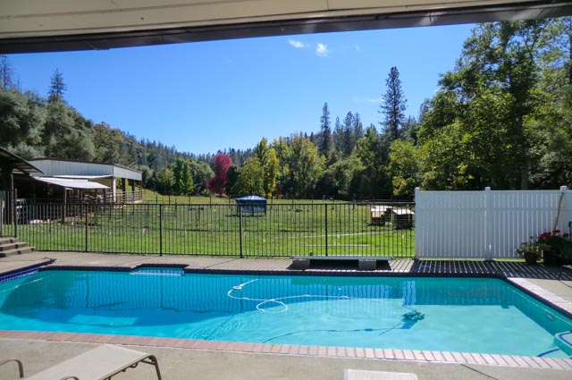 view of swimming pool, blue skies and trees starting to change color