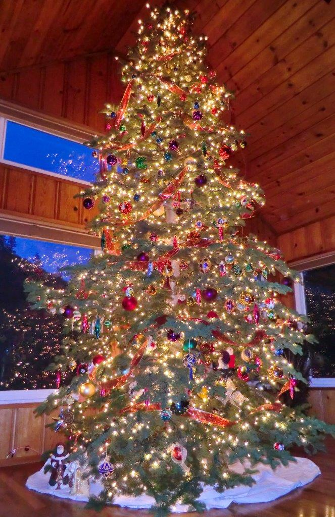 Picture of a lit, decorated Christmas tree in a house a night. Thousands of lights and hundreds of colorful and unusual ornaments. Stunning, with relfections in multiple windows in the background and a glimpse of deep blue winter twillight through the windows