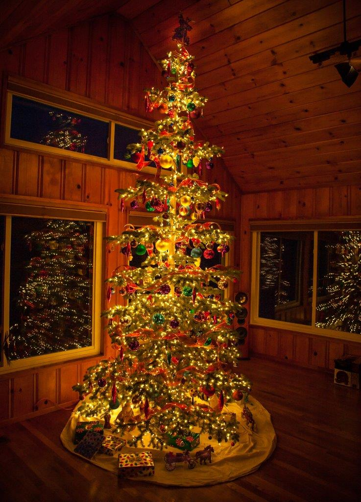 Picture of a lit, decorated Christmas tree in a house a night. Thousands of lights and hundreds of colorful and unusual ornaments. Stunning, with reflections of lights and tree in multiple, surrounding windows and a high, wooden ceiling.