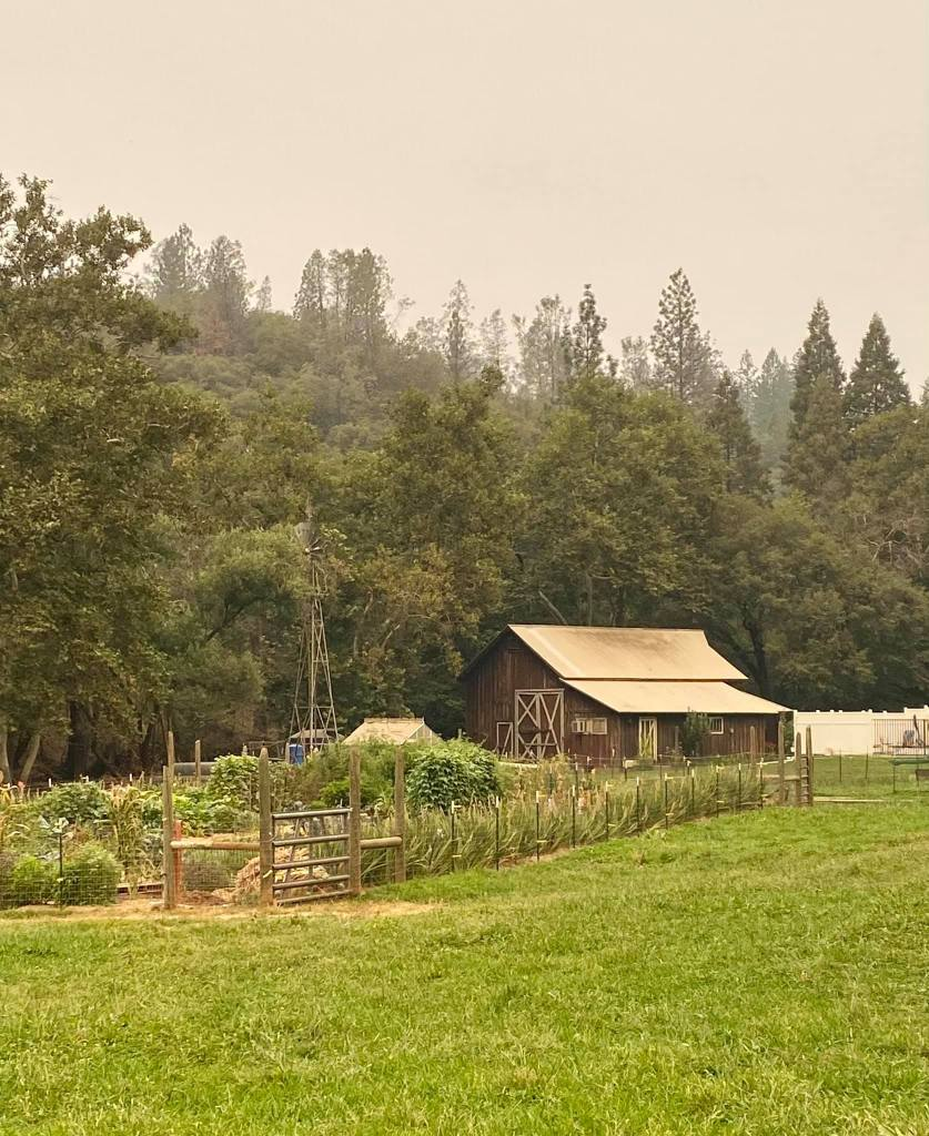 a barn, windmill, trees, pasture and garden