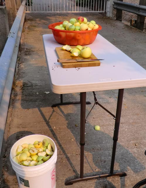 a bowl of apples, cutting board and knife on table and bucket of apples nearby