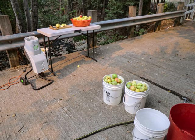 buckets of apples and bowl of apple on table next to a small machine