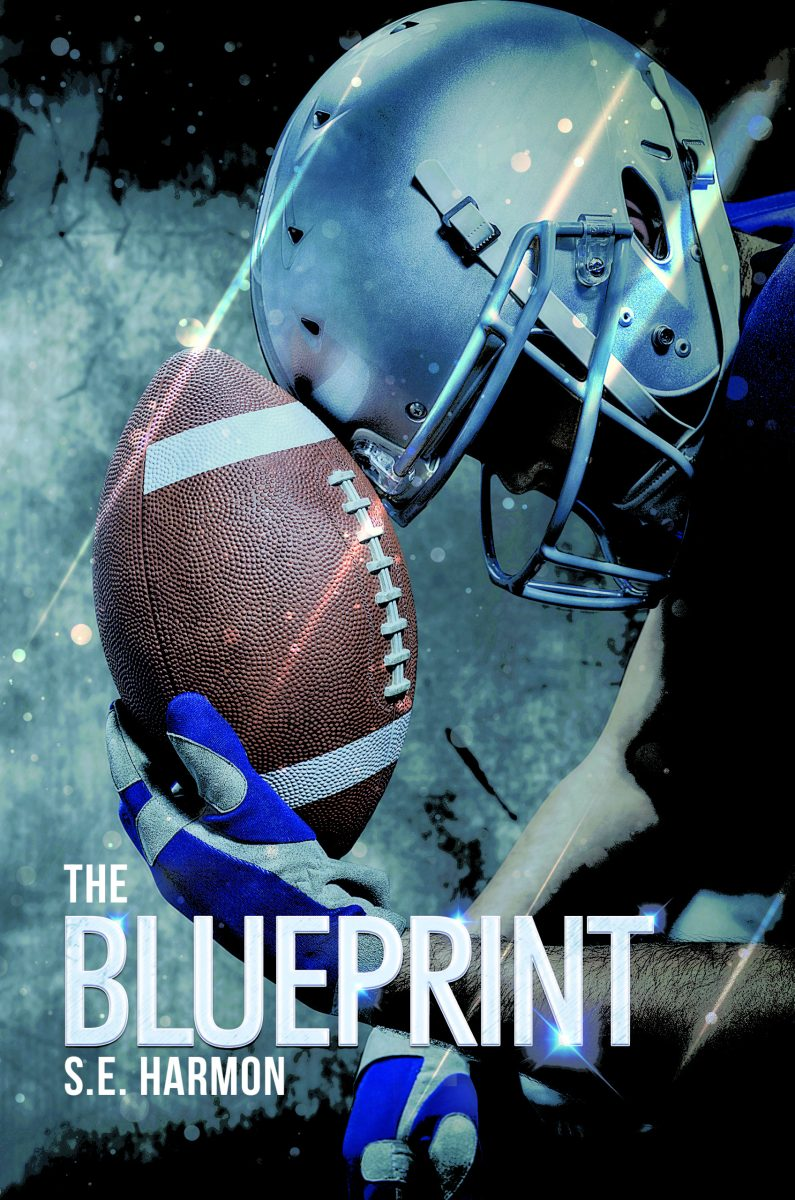 The Blueprint by S.E. Harmon: Exclusive Guest Post and Excerpt