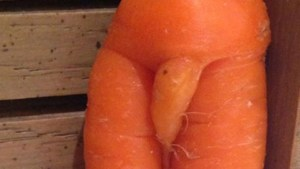 539ff49810c21_-_cos-01-penis-carrot-xl