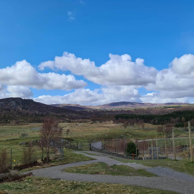 View of the Cairngorns