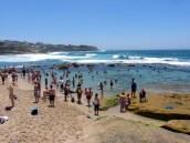 Eastern Beaches Coastal Walk - Bondi to Coogee
