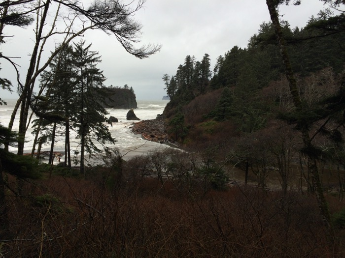 The walk to Ruby Beach in Olympic National Park