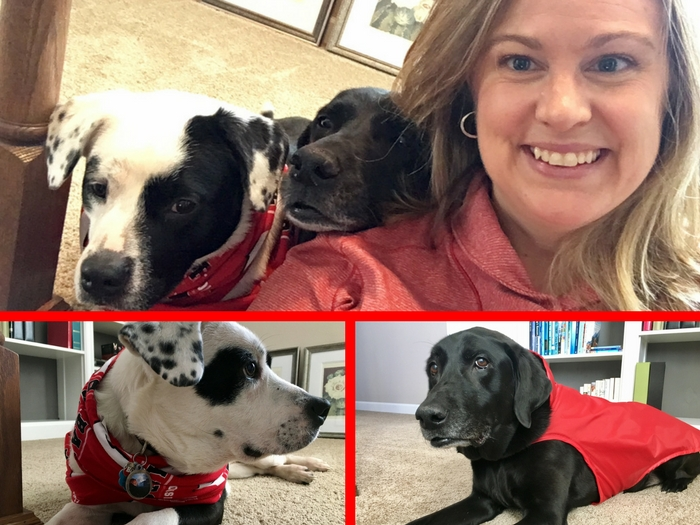 The dogs and I celebrating Wear Red Day and American Heart Month