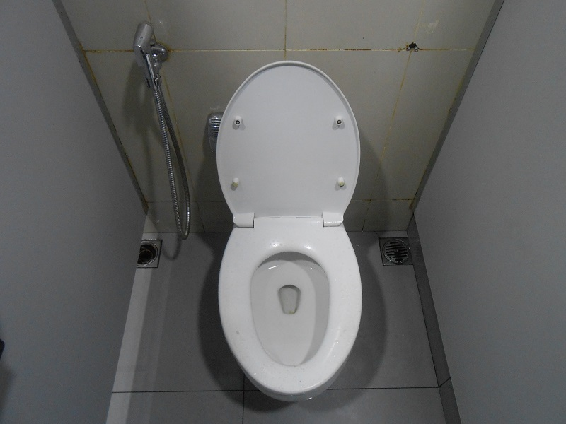 Image result for toilet with hose