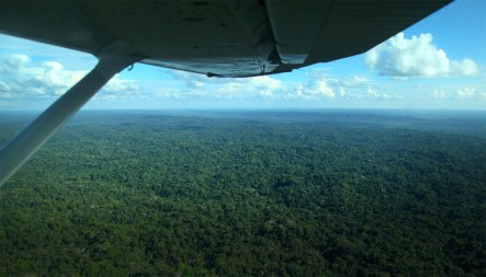 Our first view of the incredible Amazon basin as we flew into the forest.