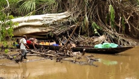 "Our Huaorani guides navigating a ""road block"" on the river."