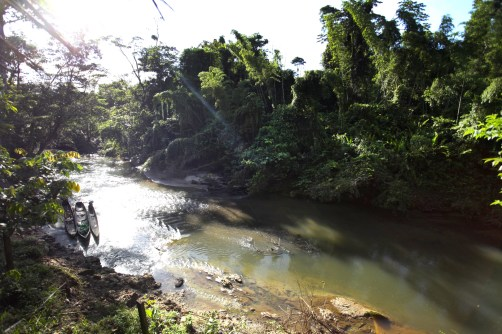 The Shiripuno River as it passes by the Huaorani Ecolodge.