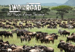 Ten Fascinating Facts About Wild and Beautiful Tanzania