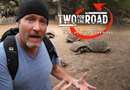Episode Extra: Visit a Galapagos Tortoise Breeding Center (VIDEO)