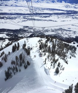 The view from the tram back down the mountain, toward Teton Village and Jackson Hole. Beautiful!