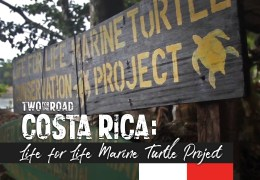 From the Episode: A Visit to the Life for Life Marine Turtle Conservation Project in Costa Rica