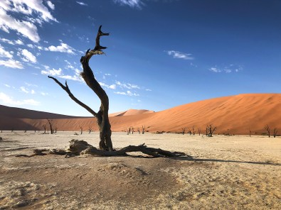 """Deadvlei, which translated to mean """"dead marsh."""""""