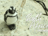 Two for the Road: Adventure Across South Africa, Part One (Full Episode)
