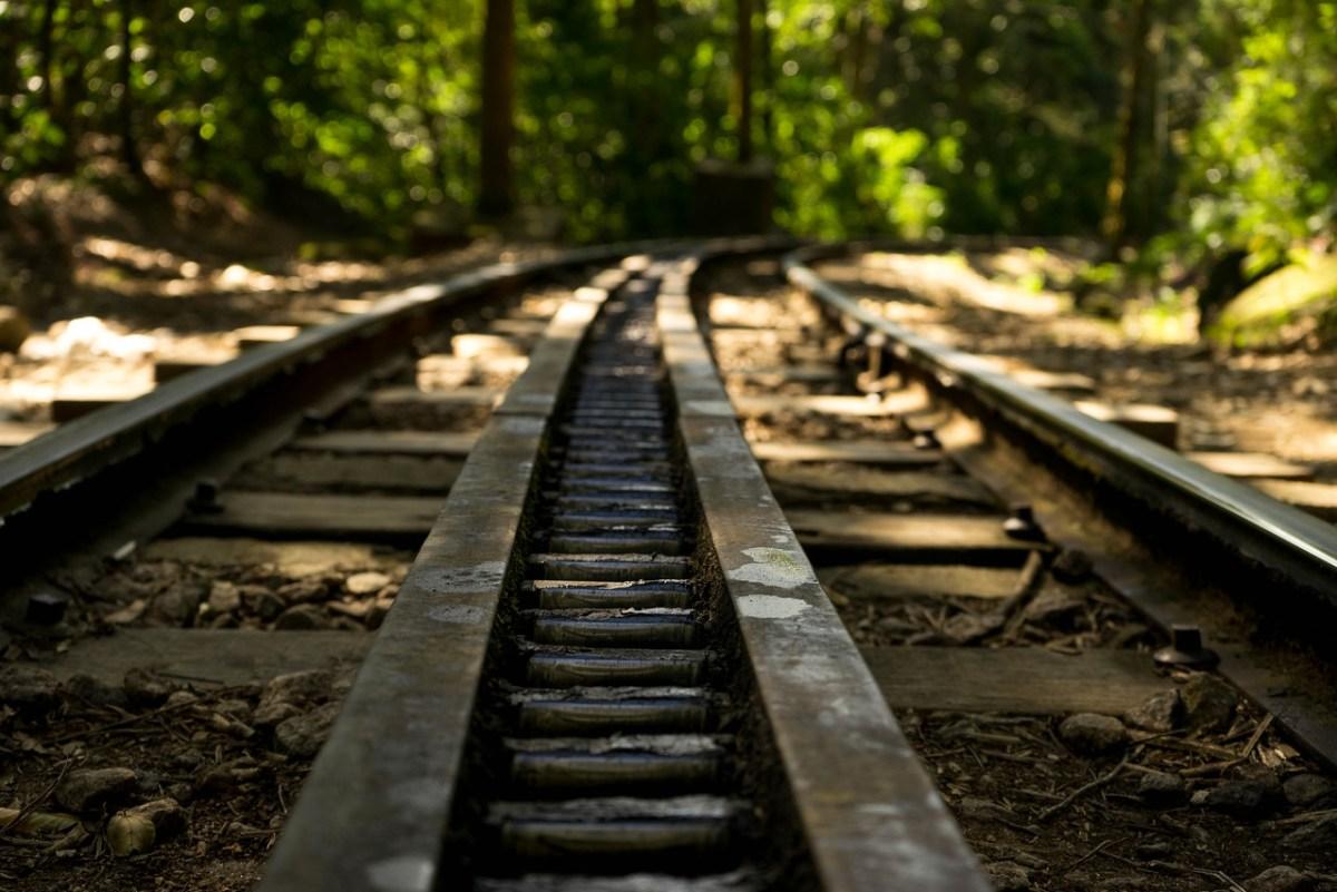 togskinner på vandreruten