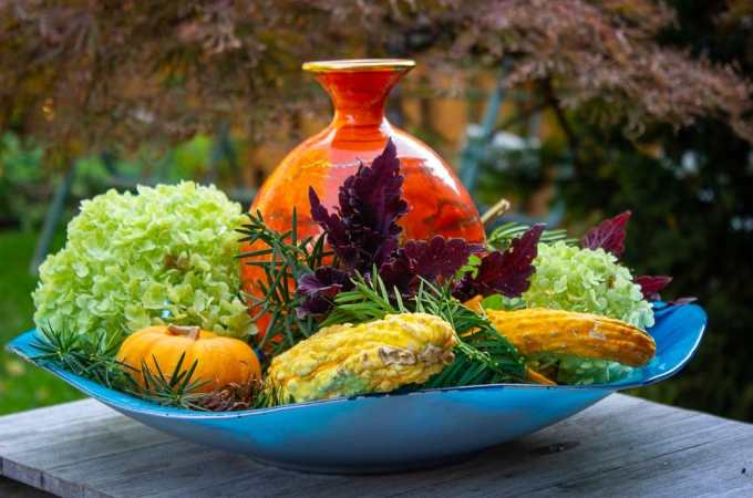 a fall flower gourd and leaf arrangement in a large flat decorator dish outdoors in front of a Japanese dwarf maple tree