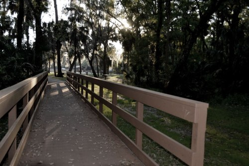 One of the many boardwalks going between hammocks and picnic areas