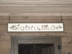 Butterfly Hollow Tennessee