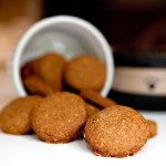 Win a Kitchen Aid Stand Mixer to Make Dog Treats