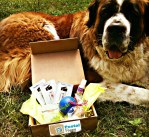Postal Puppy Sweepstakes