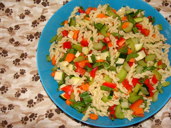 Pasta Salad for dogs