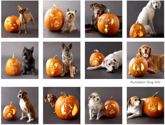 Free Downloadable Stencils to carve Dogs on pumpkins