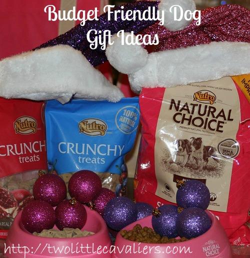 Budget Friendly Dog Gift Ideas