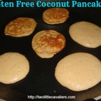 Gluten Free Coconut Pancakes - Cooking for Dogs
