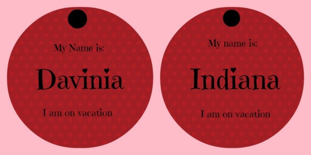 Dog ID Tags for Vacations