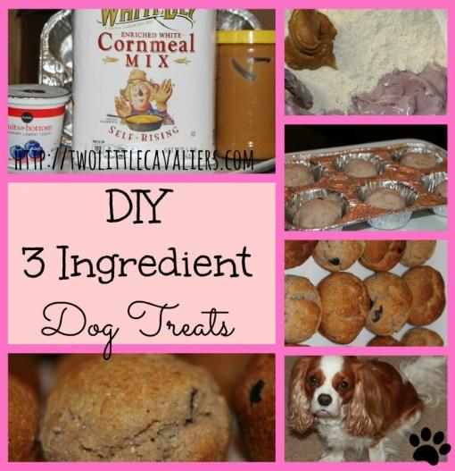3 Ingredient Dog Treats