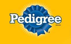 Big Anouncement from Pedigree Coming Soon