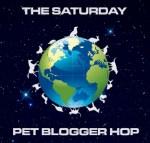 Meet the Rescues at BlogPaws / Pet Bloggers Blog Hop