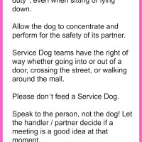 Pet Safety - Teaching Children How to Behave Around Service Dogs
