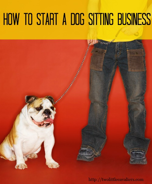 How to Start A Dog Sitting Business - Two Little Cavaliers
