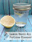 Cleaning Green DIY All Purpose Cleaner - Lemon Basil Scent