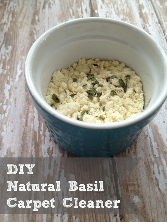 Diy Natural Carpet Cleaner Scented With Basil Two Little