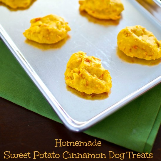 Homemade Sweet Potato Cinnamon Dog Treats Safe for cats and horses too