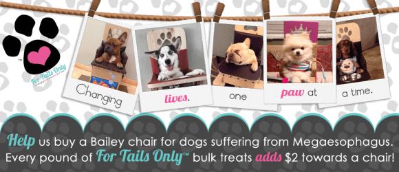 Bailey Chairs