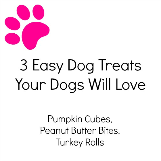 3 Easy Dog Treats Your Dogs Will Love