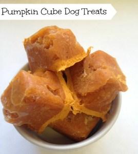 Pumpkin Cube Dog Treats